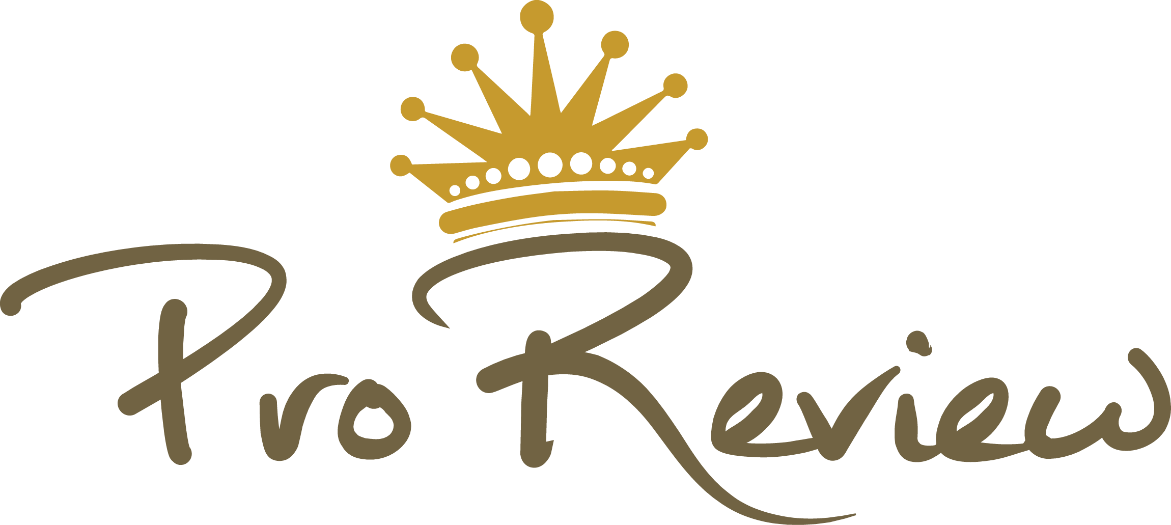 Pro Review Blog Logo