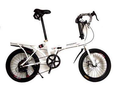 EXPERT GROUP จักรยาน MINI เสือหมอบ พับได้