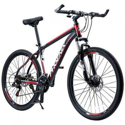 Phoenix 702RB bike