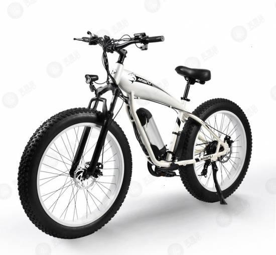 จักรยานไฟฟ้า B Ooster Easybike520